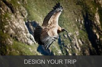 Design Your Trip to Colca Canyon